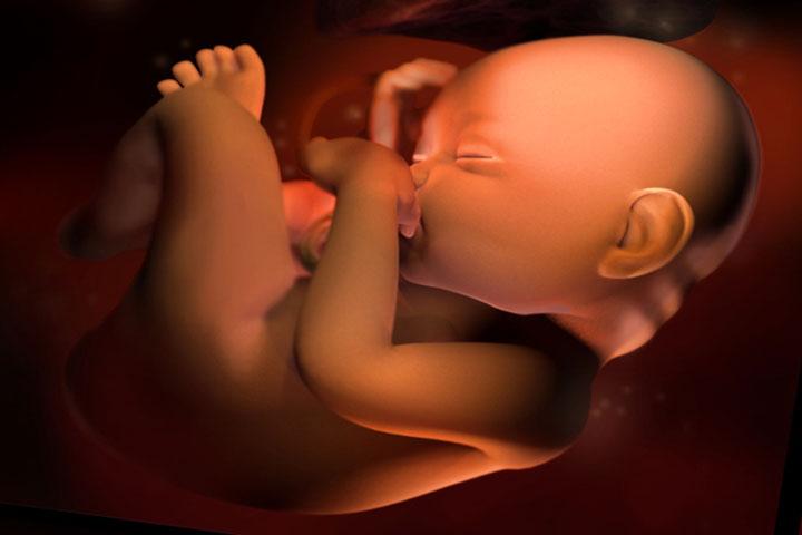 Картинки по запросу 33 неделя беременности