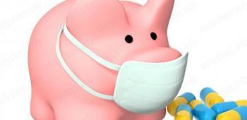Что такое свиной грипп или вирус A(H1N1) и как с ним бороться?